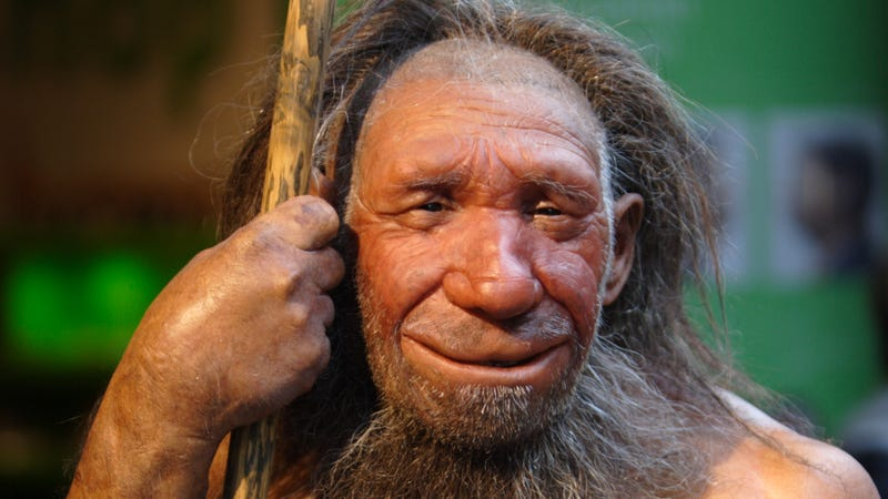 Illustration for article titled Science Win: Anthropologists Now Believe Neanderthals Had Big Stupid Grins On Their Faces Pretty Much All The Time