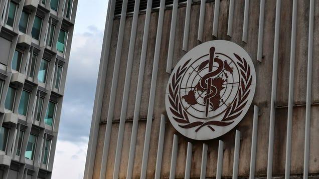 White House Says It Won t Help Global Vaccine Effort to Spite China, World Health Organization