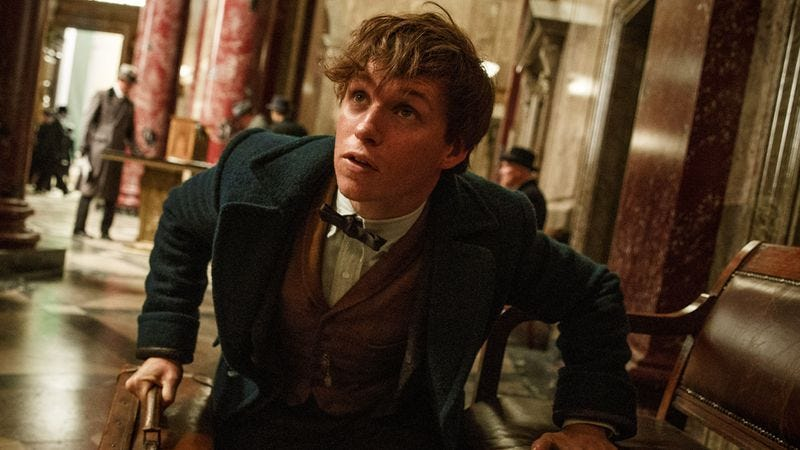 (Photo: Fantastic Beasts And Where To Find Them/Warner Bros.)