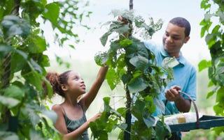 7 Urban Farmers You Should Know