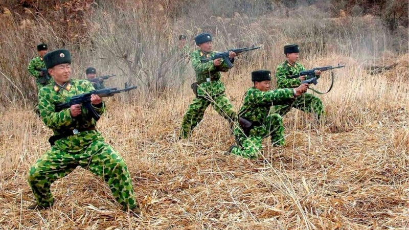 Illustration for article titled North Korean Camo Actually Isn't That Awful