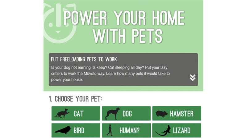 Illustration for article titled How Many Pets Would You Need To Power Your Home In an Emergency?