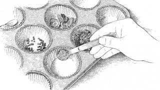 Illustration for article titled Use a Muffin Tin as Mise en Place for a Clean and Tidy Kitchen
