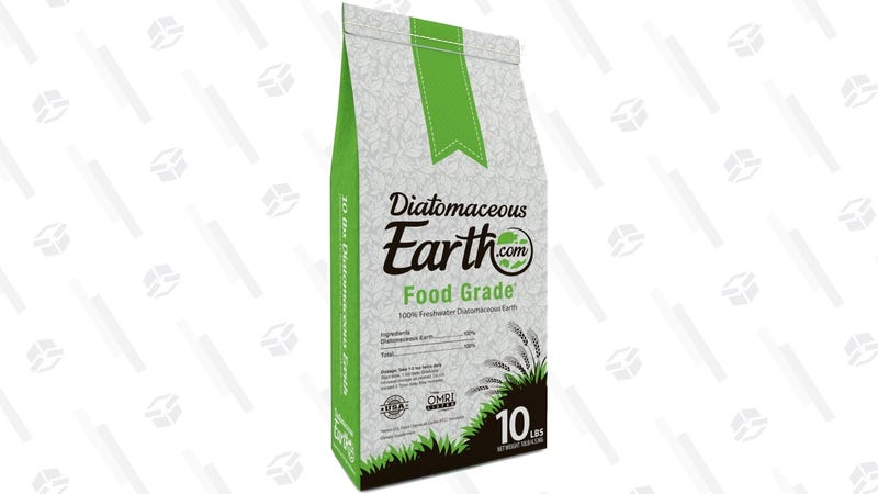 10 Pounds Diatomaceous Earth | $20 | Amazon