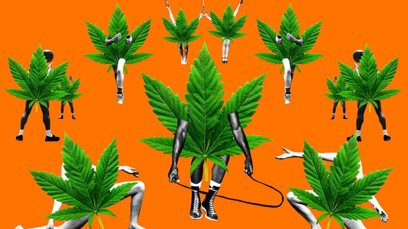 Illustration for article titled The Latest Iffy Wellness Trend Is CBD-Infused Workout Gear