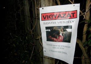 Illustration for article titled Sopronban kiplakátolták, hol ólálkodik a szatír
