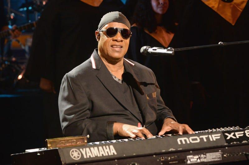 Stevie Wonder (Kevin Mazur/Hand in Hand/Getty Images)