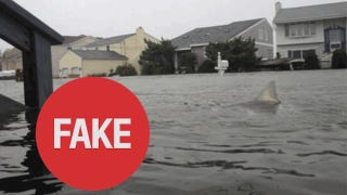 Illustration for article titled Sort Out the Real Hurricane Sandy Images from the Fake