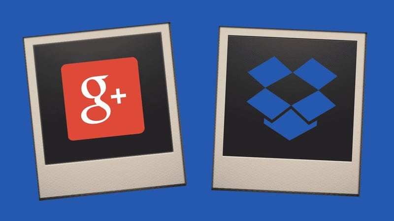 Illustration for article titled Google vs. Dropbox: Which Is Better for Hosting and Sharing Photos?