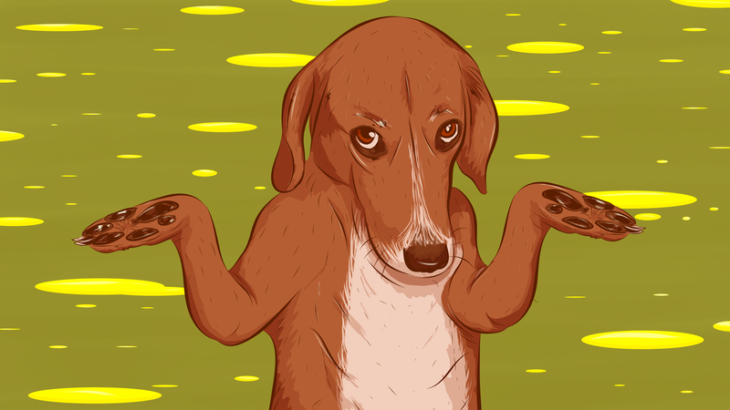 Illustration for article titled How To Housetrain Your New Puppy
