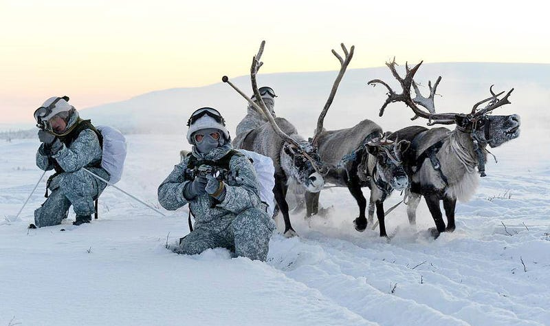 Illustration for article titled Russian Soldiers Go Native For Arctic Ops Using Reindeer And Dogsleds