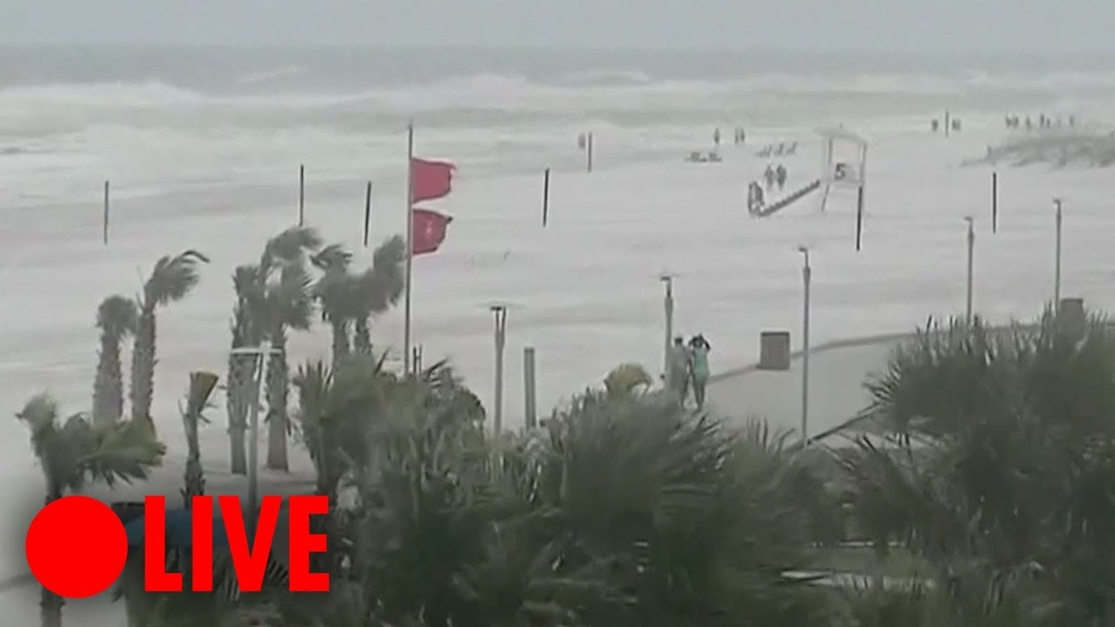 Watch Hurricane Michael on Live Webcams