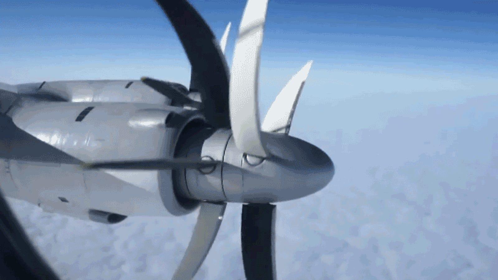 Banging in airplane gif