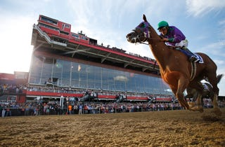 Illustration for article titled California Chrome Takes Preakness, Has Shot At Triple Crown