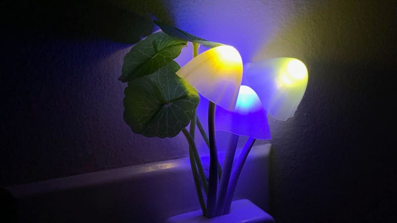 You Don't Need to Be a Baby to Love Nightlights