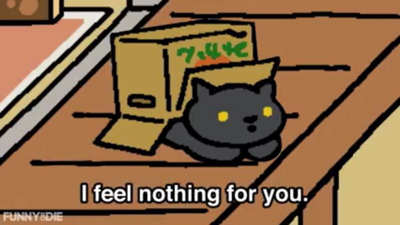 Illustration for article titled Sorry, players, but the cats of Neko Atsume will never love you back