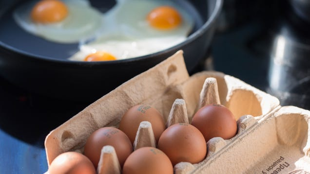 Here s How Much Protein You Really Need
