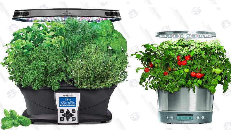 Even Serial Plant Killers Can Grow Their Own Veggies With These Discounted AeroGardens