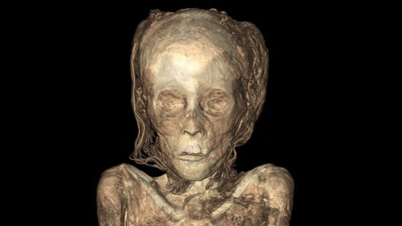 New Mummy X Rays Let You Peer Right Inside Ancient