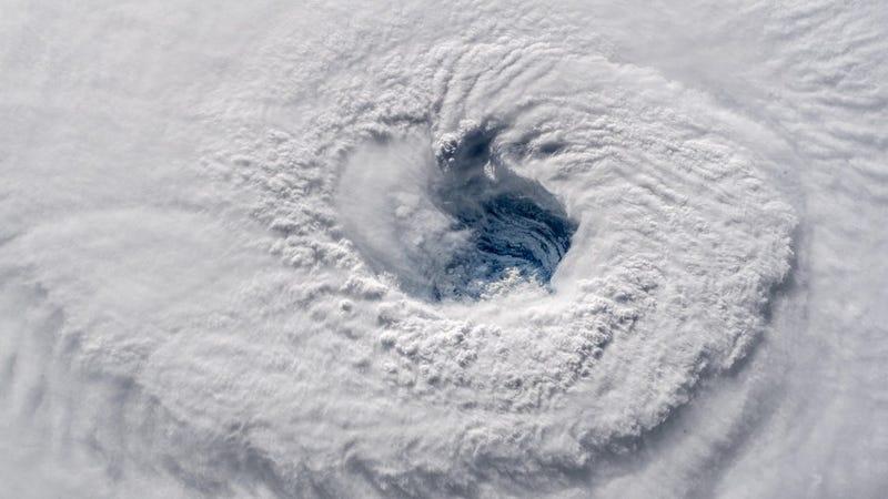 Illustration for article titled El huracán Florence reemplazó su pared del ojo: qué significa y cuatro datos a tener en cuenta antes de que toque tierra