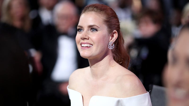 Illustration for article titled 'People Constantly Confuse Isla Fisher And Me For Danny Bonaduce': 5 Questions With Amy Adams