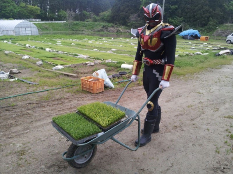 Illustration for article titled In Japan, There's a Superhero Who...Plants Rice
