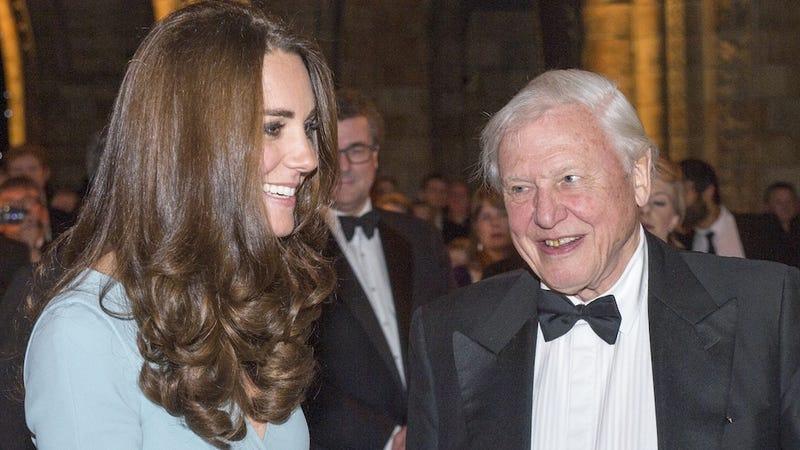 Illustration for article titled People Won't Stop Naming Shit After Sir David Attenborough