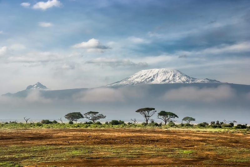 Illustration for article titled You really can see Kilimanjaro rise like Olympus above the Serengeti