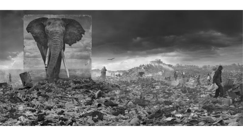 All Images: Nick Brandt