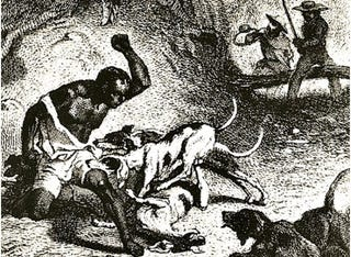 Fugitive Slave Attacked by Dogs, 19th century(slaveryimages.org; original source unidentified)