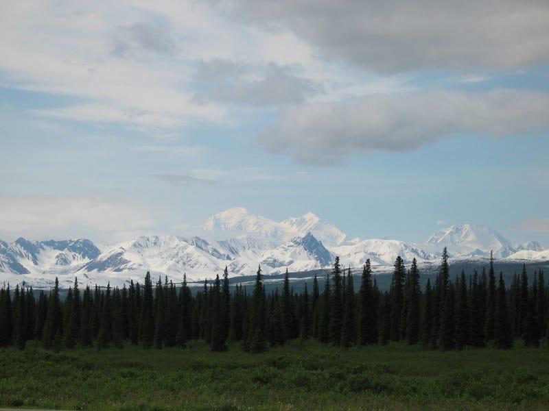 Illustration for article titled Travel - Alaska (2003)