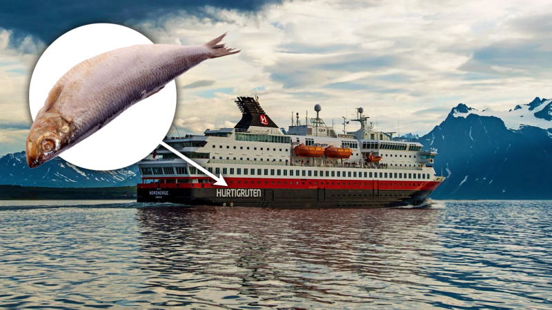Illustration for article titled Esta compañía de cruceros Noruega planea usar restos de pescado como combustible