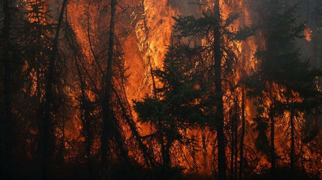 Study Finds Lung Damage in Firefighters Years After a Major Wildfire