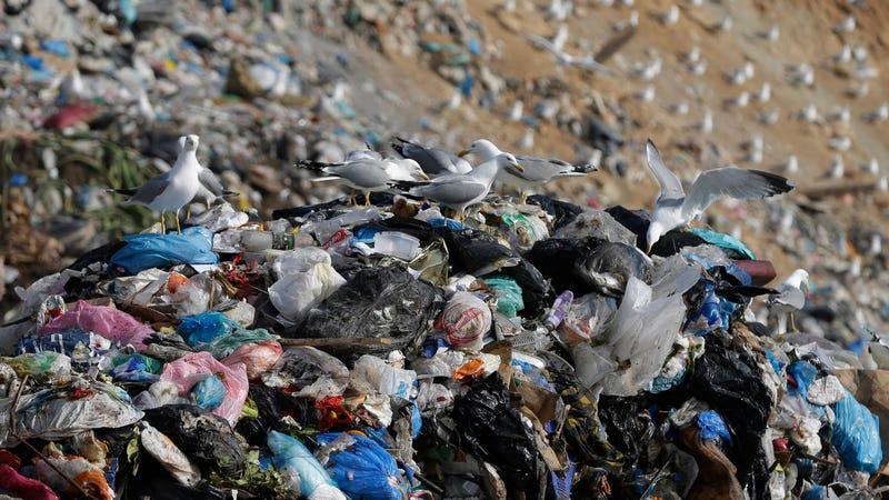 Plastic waste in Greece.