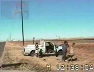 Illustration for article titled VIDEO: Man Tackles Emu In Roadside Wrestling Match