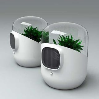 Illustration for article titled Bel-Air Filtration System Uses Plants to Purify Our Environs