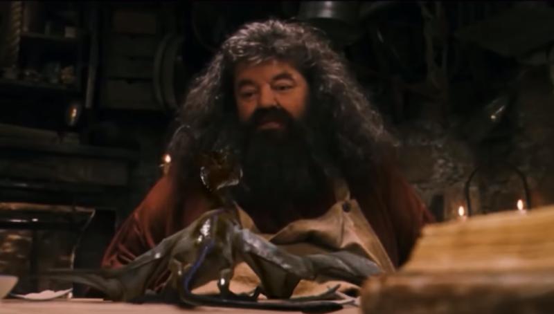El semigigante Rubeus Hagrid.