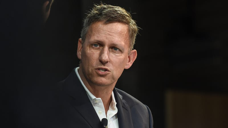 Billionaire Peter Thiel speaks at the New York Times DealBook conference on November 1, 2018