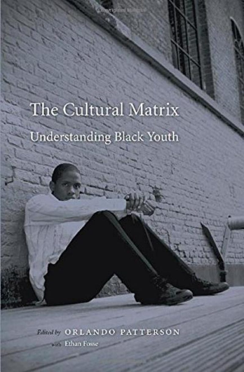 can reforming culture save black youths
