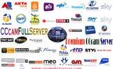 CCcamFullServer logo