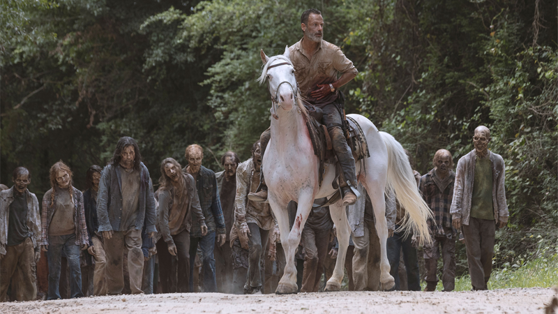 The horse is a new episode of Walking Dead, the zombies are torrenters.