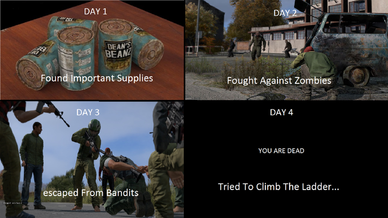 Illustration for article titled DayZ Summed Up Perfectly