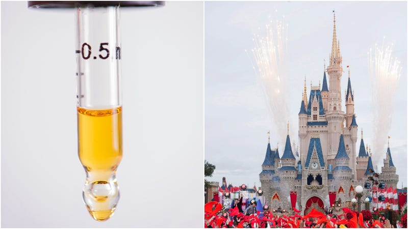 Illustration for article titled Great-grandmother who spent 12 hours in jail for bringing CBD oil to Disney World will sue [Updated]