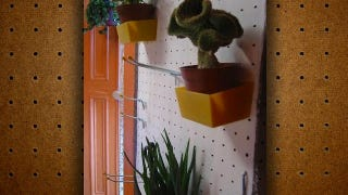 Illustration for article titled Store Plants on Pegboard to Save Floor Space