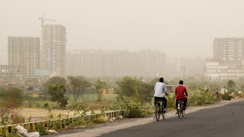 Cyclists pedaling on the outskirts of New Delhi on June 14, 2018.
