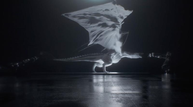 Imagen: Gilles Augustijnen (Vimeo)