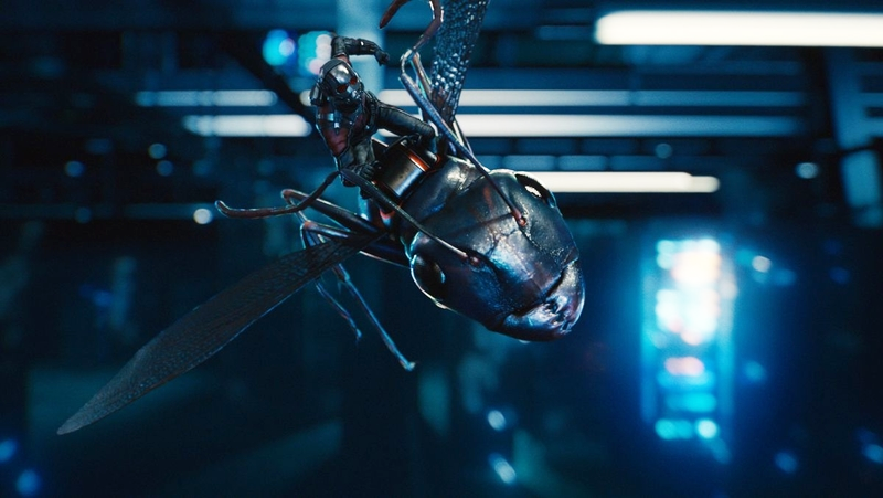"""They can do a lot of things, but they still need a leader."" (Ant-Man, 2015)"