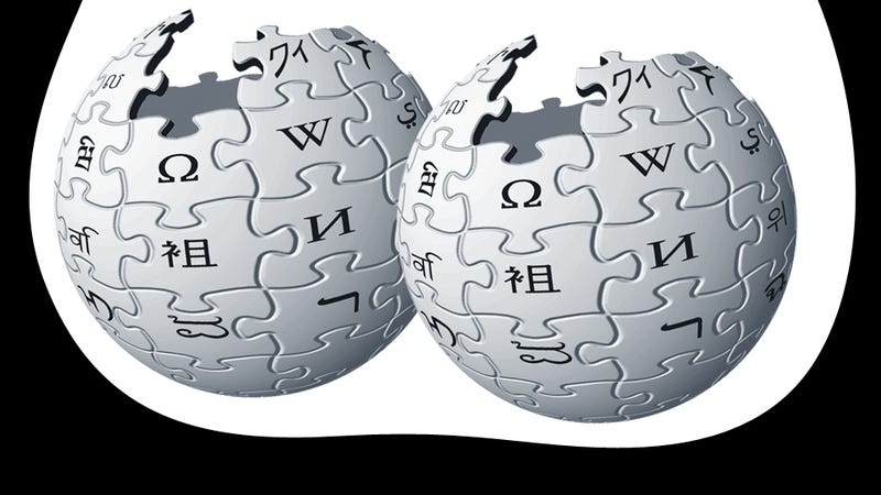 Illustration for article titled Wikipedia's Editors Are 91 Percent Male Because Citations Are Stored in the Ball Sack