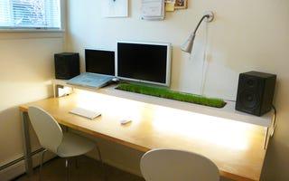 A Garden On Your Work Desk