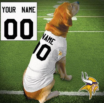 Illustration for article titled Insensitive NFL Sells Brett Favre Dog Jerseys!